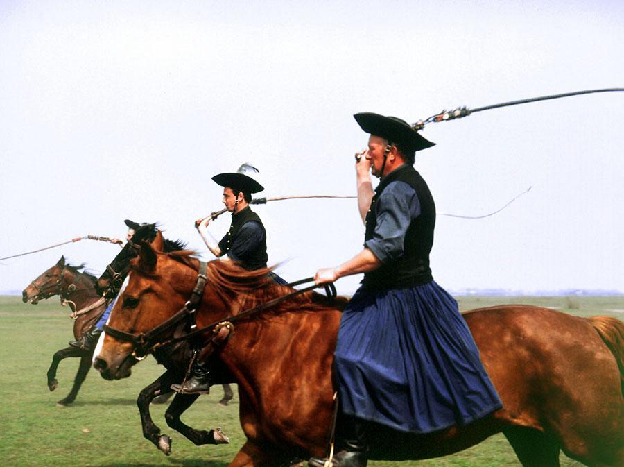 Предстваление венгерских наездников, парк Хортобадь, Венгрия